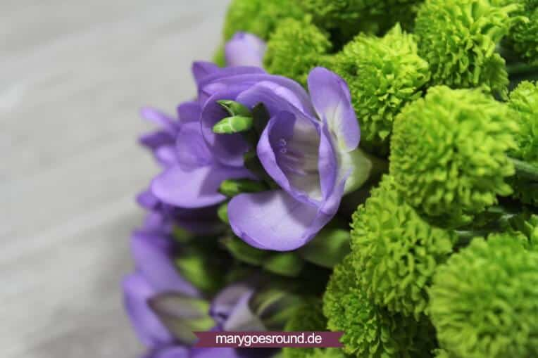 Blumenabo im Test | marygoesround.de