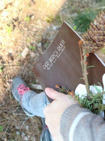 Gipfelbuch für Wanderabenteuer | marygoesround®